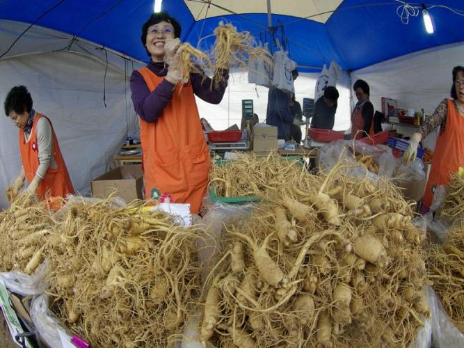 Thăm chợ sâm Geumsan ở Hàn Quốc